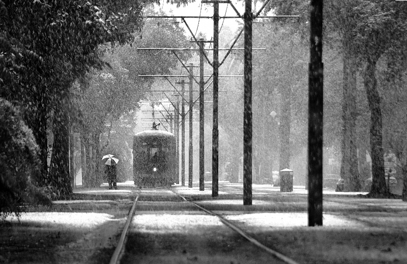 Snow in New Orleans
